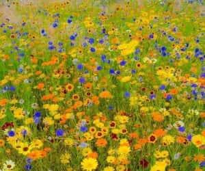 2006, art, and flower garden image