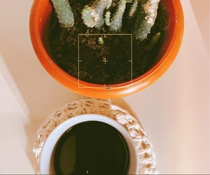 aesthetic, coffe, and photography image