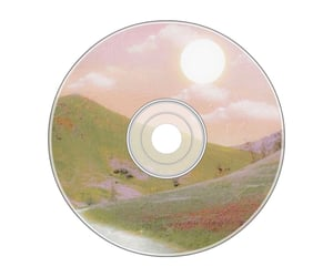 aesthetic, disc, and paint image