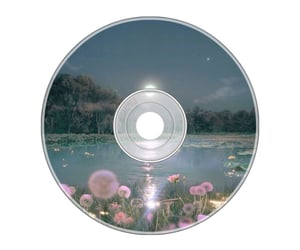 aesthetic, disc, and png image