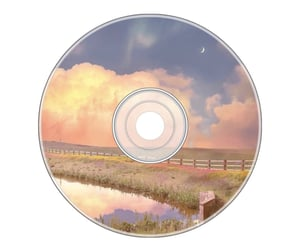 aesthetic, disc, and pastel image