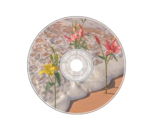 art, cd, and flowers image