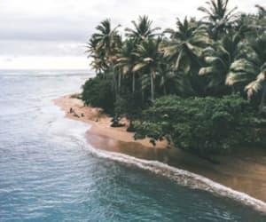 trees summer travel and island beautiful ocean