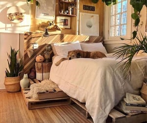 room, bedroom, and dog image