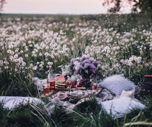 aesthetic, lavender, and date image