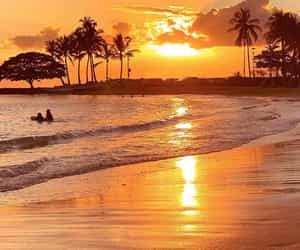 Hawaii 💙