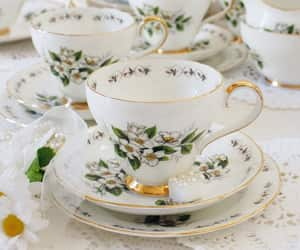 daisy, floral, and tea cup image