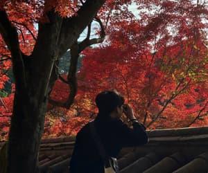 aesthetic autumn fall image