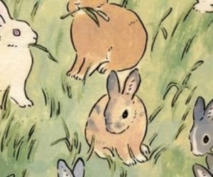 bunny, header, and rabbit image