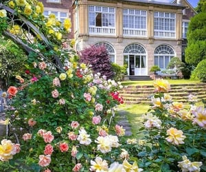 architecture, dream house, and garden image