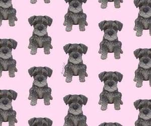 dog, pattern, and patternator image
