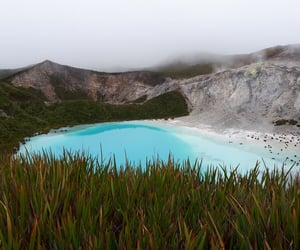 article, oceania, and wanderlust image