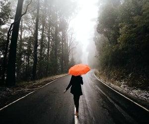 rain, umbrella, and road image