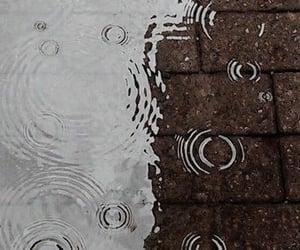 puddle and rain image