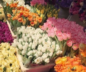 flowers, spring, and bouquet image
