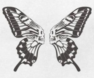butterfly, skull, and tattoo image
