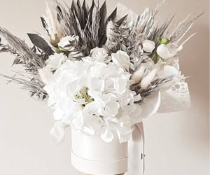 bouquet, gray, and hydrangea image