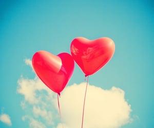 emotions, relationship goals, and lovebirds image