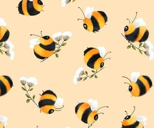 art, background, and bee image