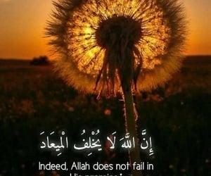 islam, اسﻻم, and اللَّہ image