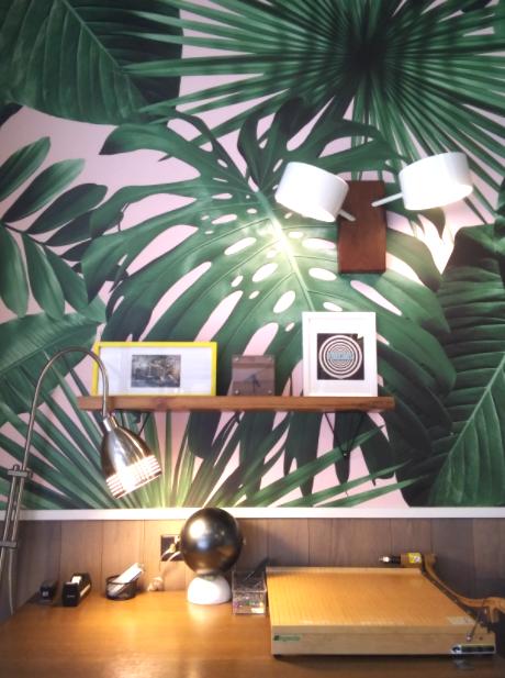 palmtrees, fronds, and santamonica image
