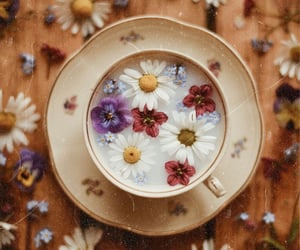 cup, flowers, and spring image