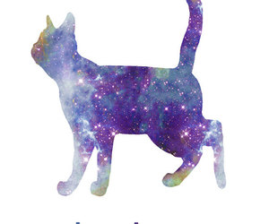 cat, galaxy, and nebula image