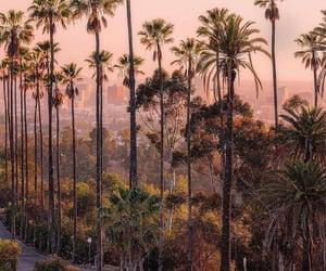 california, nature, and city image