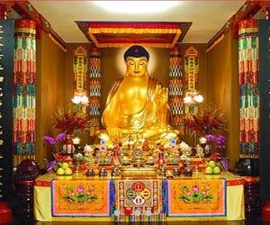 article, buddhism, and openholyway image