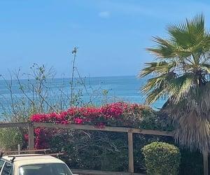 beautiful, california, and cool image
