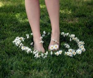 garden, idea, and magic image