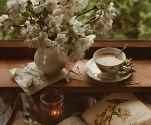 book, cozy, and spring image