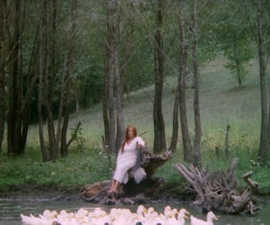 forest, long hair, and river image