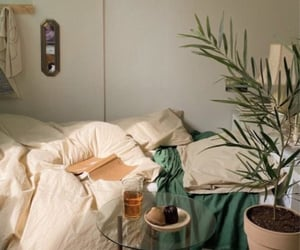 plants, bedroom, and book image