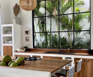 home, plant, and wood image