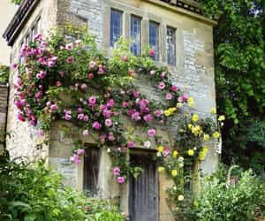 architecture, cozy, and garden image