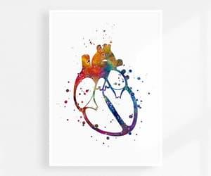 etsy, heart, and anatomy art image
