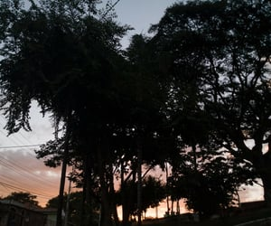 brasil, brazil, and natureza image