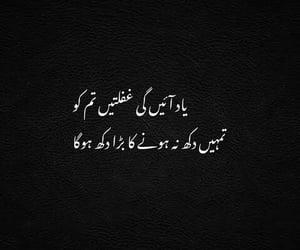 urdu poetry and urdu qoutes image