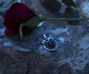 aesthetic, dragon, and jewelry image