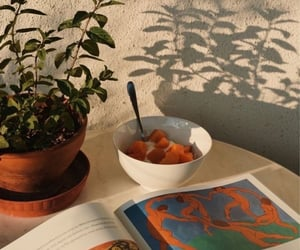 apartment, book, and breakfast image