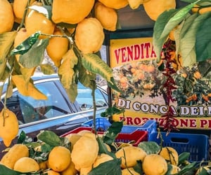 lemons, aesthetic, and fashion image