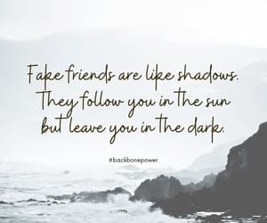 fake friends, toxic people, and fake people image