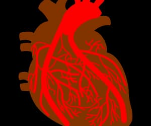 heart attack, medicine, and high blood pressure image
