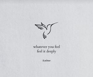 deep, feeling, and quotes image