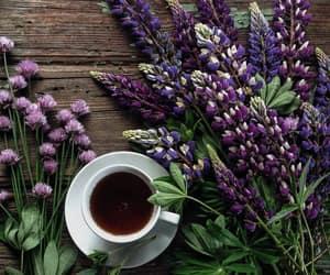 coffee, tea, and lupins image