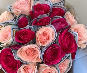 money and roses image