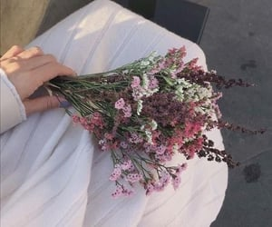 flowers, aesthetic, and tumblr image