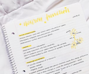aesthetic, study, and that girl image