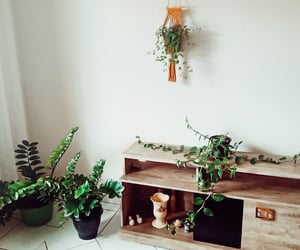 aesthetic, autoral, and decor image